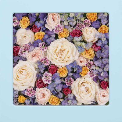 供養花-4958