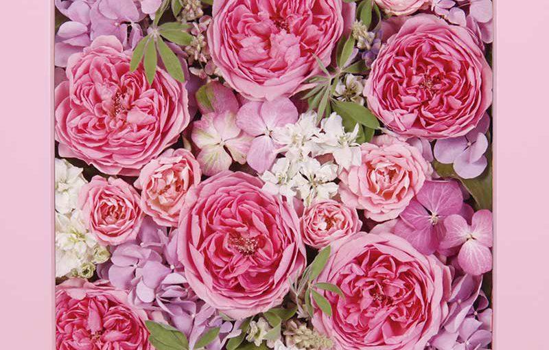 供養花-4960-2