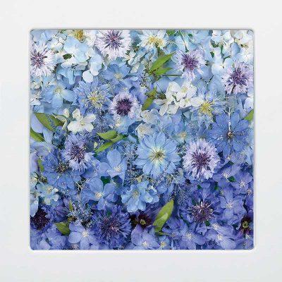 供養花-4991