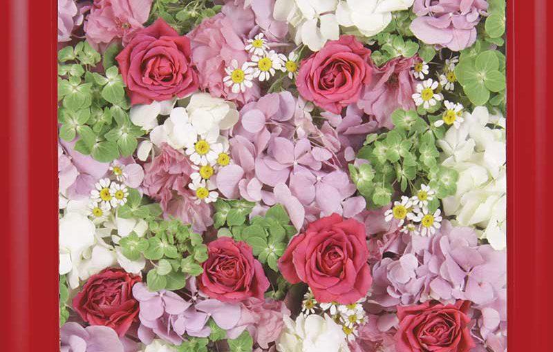 供養花-6683-2