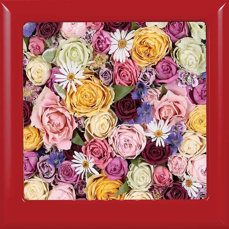 供養花-6683-5