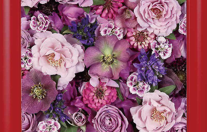 供養花-6683-6