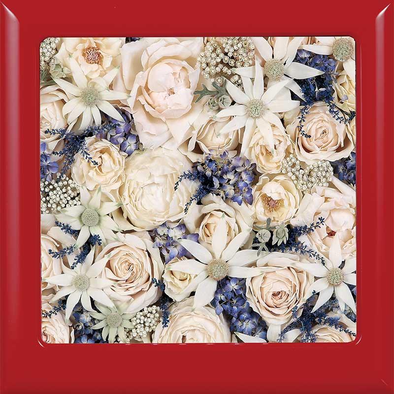 供養花-6683-8